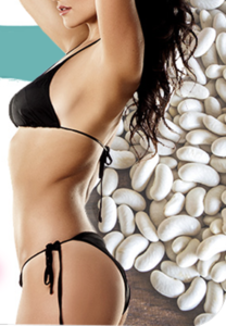White Kidney Bean Cannellini