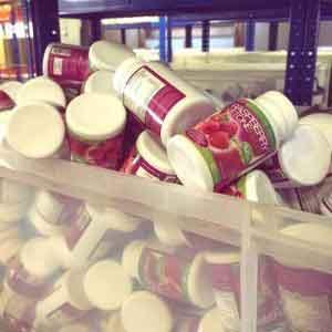 raspberry ketone plus evolution slimming